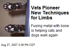 Vets Pioneer New Techniques for Limbs