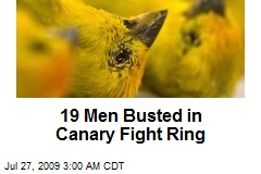 19 Men Busted in Canary Fight Ring
