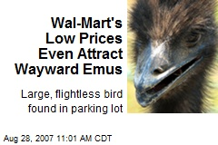 Wal-Mart's Low Prices Even Attract Wayward Emus