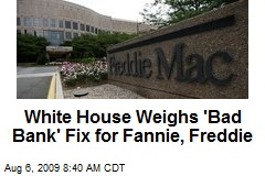 White House Weighs 'Bad Bank' Fix for Fannie, Freddie