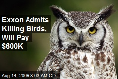 Exxon Admits Killing Birds, Will Pay $600K