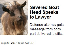 Severed Goat Head Speaks to Lawyer