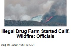 Illegal Drug Farm Started Calif. Wildfire: Officials