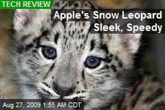 Apple's Snow Leopard Sleek, Speedy