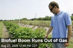 Biofuel Boom Runs Out of Gas