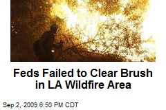 Feds Failed to Clear Brush in LA Wildfire Area