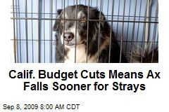 Calif. Budget Cuts Means Ax Falls Sooner for Strays