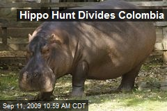 Hippo Hunt Divides Colombia