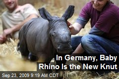 In Germany, Baby Rhino Is the New Knut