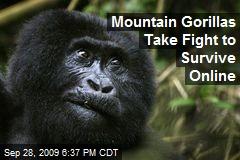 Mountain Gorillas Take Fight to Survive Online