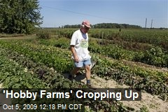 'Hobby Farms' Cropping Up