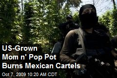 US-Grown Mom n' Pop Pot Burns Mexican Cartels