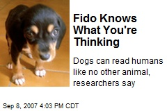 Fido Knows What You're Thinking