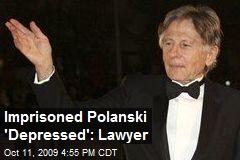 Imprisoned Polanski 'Depressed': Lawyer
