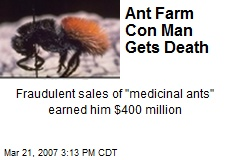 Ant Farm Con Man Gets Death