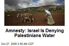Amnesty: Israel Is Denying Palestinians Water