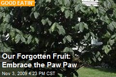 Our Forgotten Fruit: Embrace the Paw Paw