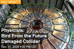 Physicists: Bird From the Future Damaged Collider