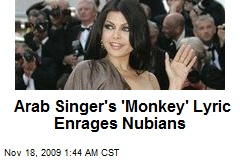 Arab Singer's 'Monkey' Lyric Enrages Nubians