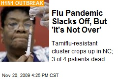 Flu Pandemic Slacks Off, But 'It's Not Over'