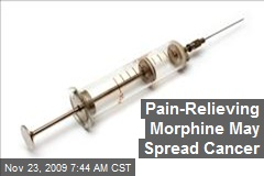 Pain-Relieving Morphine May Spread Cancer