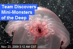 Team Discovers Mini-Monsters of the Deep