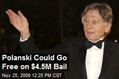 Polanski Could Go Free on $4.5M Bail