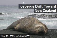 Icebergs Drift Toward New Zealand