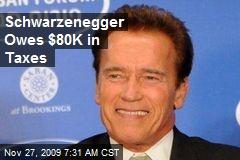 Schwarzenegger Owes $80K in Taxes
