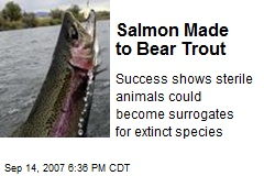Salmon Made to Bear Trout