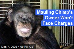 Mauling Chimp's Owner Won't Face Charges