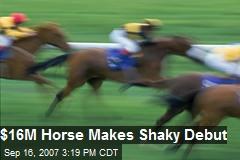 $16M Horse Makes Shaky Debut