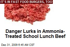 Danger Lurks in Ammonia-Treated School Lunch Beef
