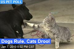 Dogs Rule, Cats Drool