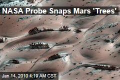 NASA Probe Snaps Mars 'Trees'