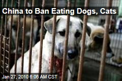 China to Ban Eating Dogs, Cats
