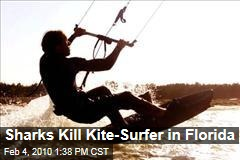 Sharks Kill Kite-Surfer in Florida