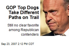 GOP Top Dogs Take Different Paths on Trail