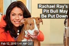 Rachael Ray's Pit Bull May Be Put Down