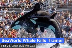 SeaWorld Whale Kills Trainer