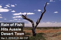 Rain of Fish Hits Aussie Desert Town