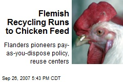 Flemish Recycling Runs to Chicken Feed