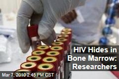 HIV Hides in Bone Marrow: Researchers