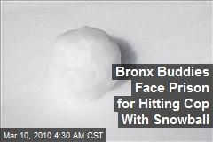 Bronx Buddies Face Prison for Hitting Cop With Snowball