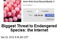 Biggest Threat to Endangered Species: the Internet