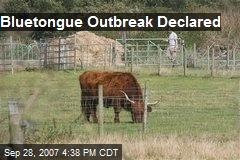 Bluetongue Outbreak Declared