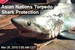 Asian Nations Torpedo Shark Protection