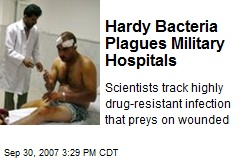 Hardy Bacteria Plagues Military Hospitals