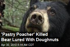 'Pastry Poacher' Killed Bear Lured With Donuts