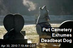 Pet Cemetery Exhumes Deadbeat Dog